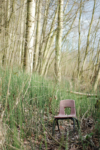 Chair in the Cottonwoods by Lydia Selk